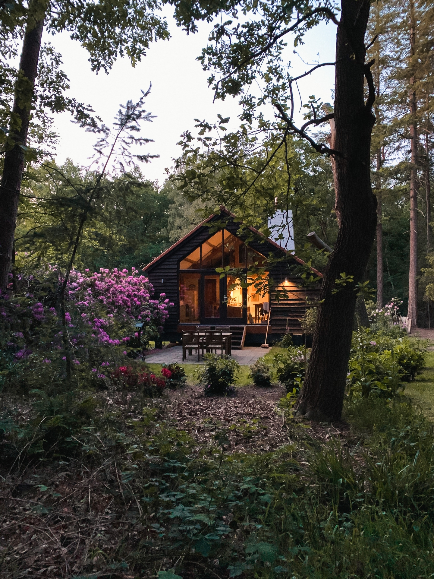 Cabin in the woods Vierhouten